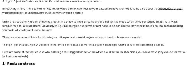 Top 6 Benefits of Dogs in the Workplace-page-001.jpg